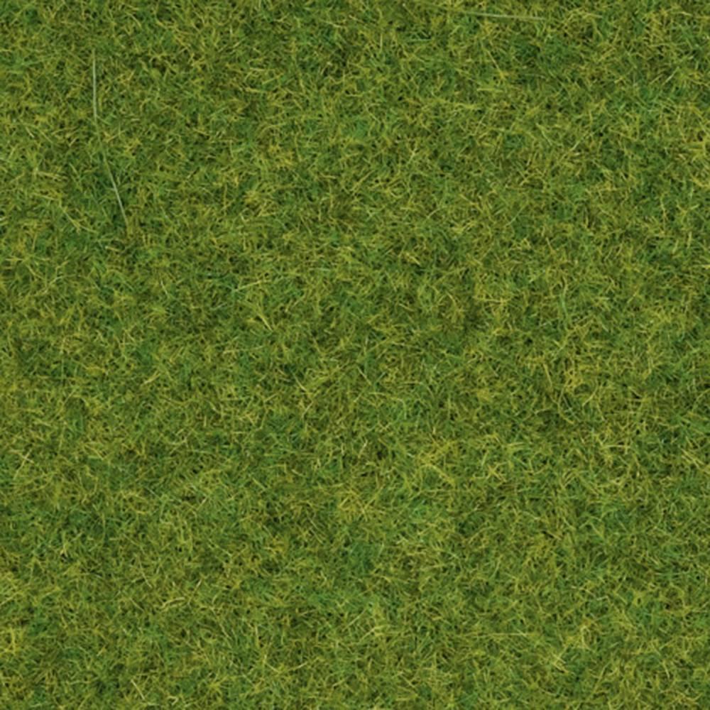 NOCH Herbage à répandre gazon dornement NOCH 08314 gazon 20 g