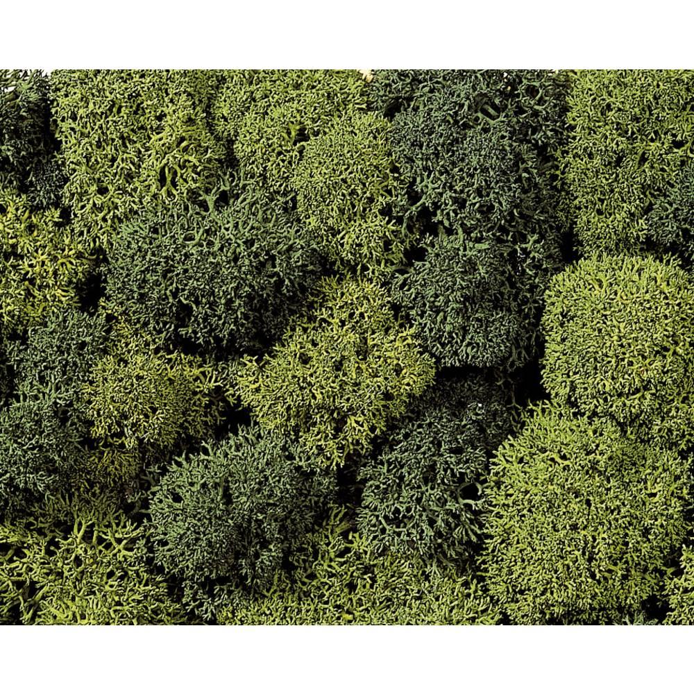 NOCH Mousse NOCH 08610 vert clair, vert foncé