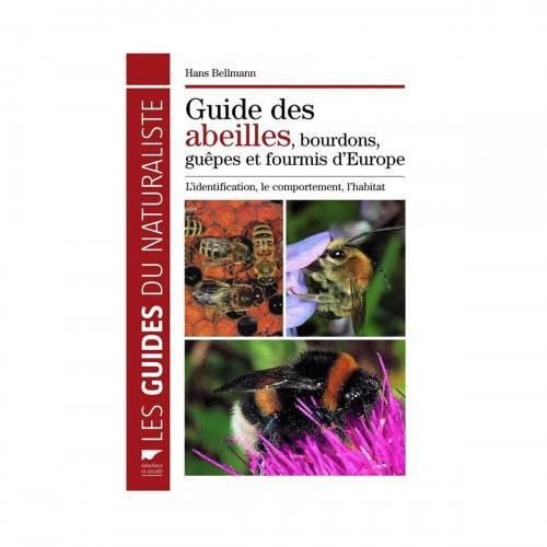 Lubéron Apiculture Guide des abeilles, bourdons, guêpes et fourmis d'europe