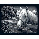 Kit image à gratter  cheval, paysage , 25 x 20 cm Kit image à gratter... par LeGuide.com Publicité