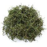 Mousse d´Espagne, vert, 50 g Mousse d´Espagne, vert, idéal pour la décoration... par LeGuide.com Publicité