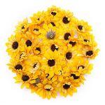 Têtes de tournesol, 4,5 cm Ø, 24 pièces Têtes de tournesol, dim. : 4,5... par LeGuide.com Publicité