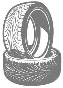 Michelin 250X17 MICH.M45 REINF.43S TT
