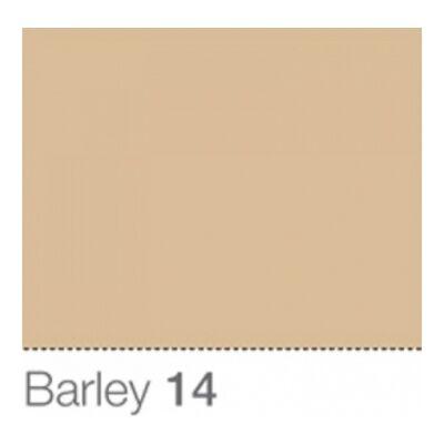 Colorama Fond de Studio 2.72 X 11m Barley