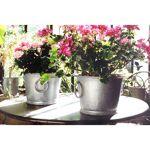 Jardin et Saisons Pot en zinc rond 13 Litres Craquez pour ce pot en zinc... par LeGuide.com Publicité