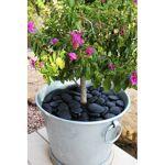 Jardin et Saisons Galet de jardin décoratif noir en plastique recyclé... par LeGuide.com Publicité