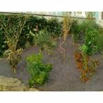 Jardin et Saisons Feutre de paillage biodégradable Totalement biodégradable... par LeGuide.com Publicité