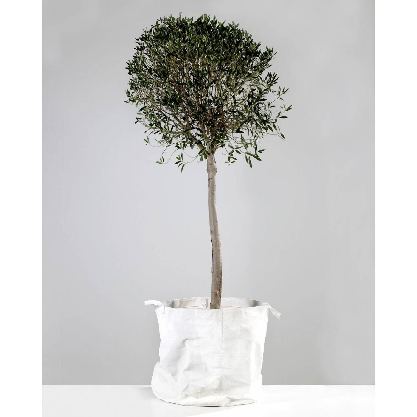 Serax Sac Cache Pot XL Toile Canvas Blanc Serax