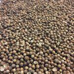 louis  Louis Coriandre Bio - Fruit 100g - Tisane Coriandrum sativum L.... par LeGuide.com Publicité