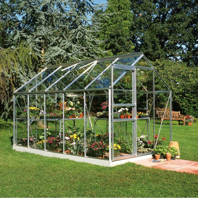 Halls Serre de jardin 6,2m² en aluminium et verre horticole Popular - Halls
