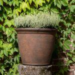 Mega Collections Bac à plantes en plastique rotomoulé Rinca Kiri vintage... par LeGuide.com Publicité