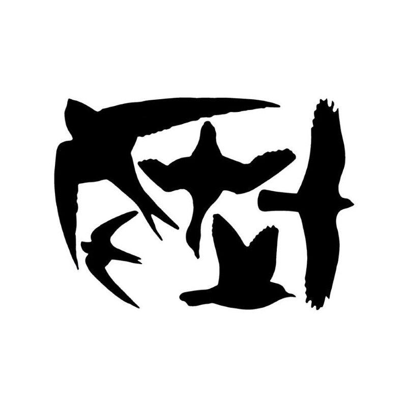 EDBV Stickers oiseaux pour fenêtre
