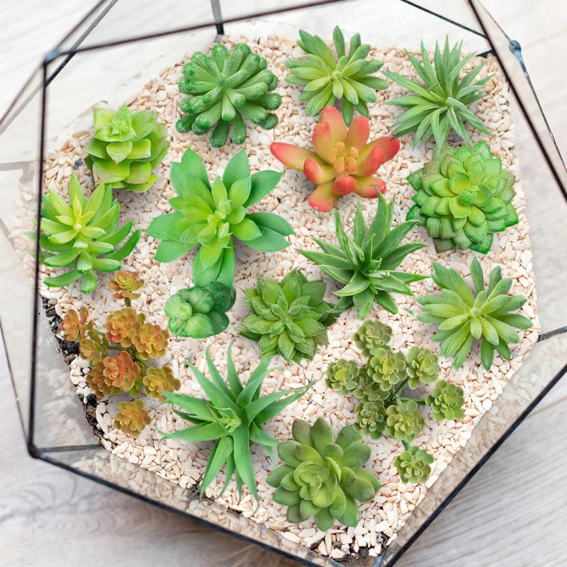 IDMarket Lot de 15 succulentes artificielles