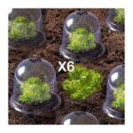 probache  ProBache  Cloche à salades X6 serre de protection pour plants... par LeGuide.com Publicité