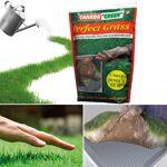 ProBache  Sac gazon rapide Perfect Grass Canada Green 1kg   par  Publicité