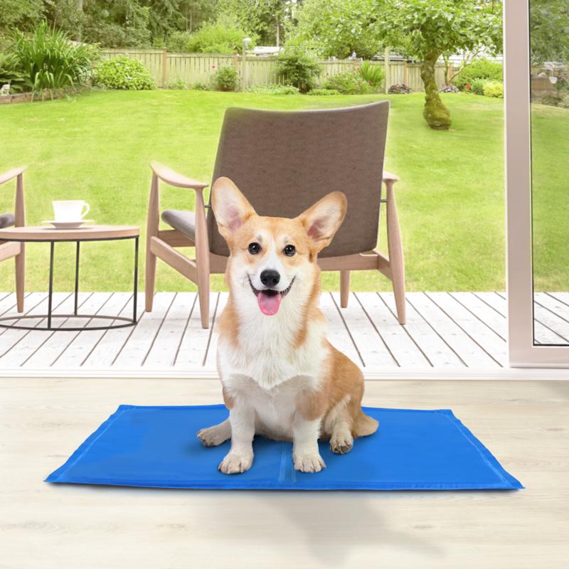 IDMarket Tapis rafraîchissant 50x65 cm pour chiens et animaux de compagnie