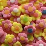 jake  JAKE Marguerites sucrées en sac de 1 kg bonbons gélifiés sucrés multicolores... par LeGuide.com Publicité
