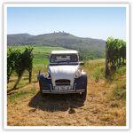 Visite en 2 CV et dégustation de vins au Domaine Bruno Hertz Coffret... par LeGuide.com Publicité