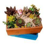 aom  AOM Jardin Plante Pot Décoratif Bois Plante Succulente Pot Planteur... par LeGuide.com Publicité
