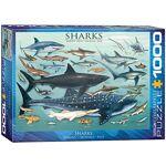 eurographics  EuroGraphics Puzzle Requins (1000pièces) Puzzle découpé... par LeGuide.com Publicité