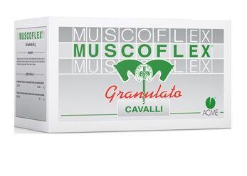 Acme srl Muscoflex 40bust 25g