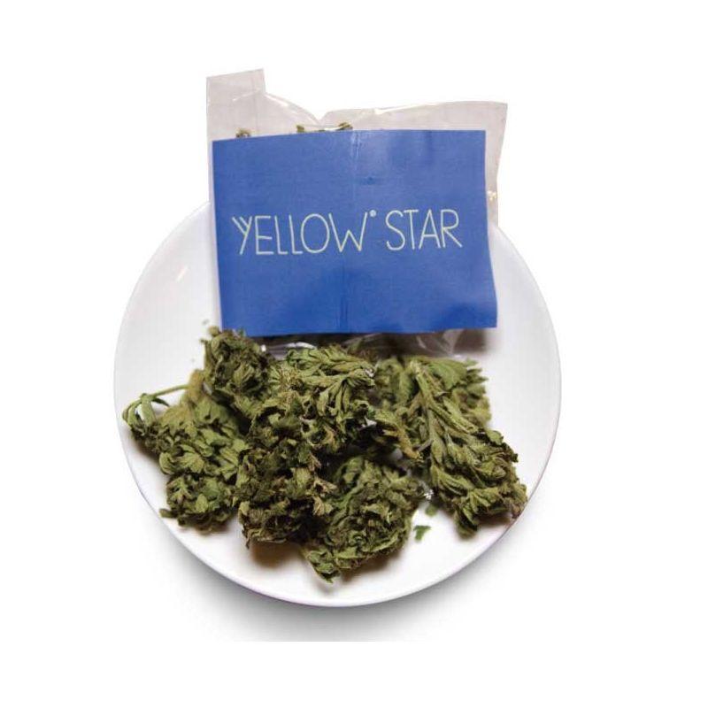 A-Yellow Star 2,5gr