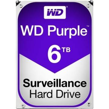 Western Digital Purple 6TB Surveillance Serial SATA III - Hard Disk - Garanzia  Italia