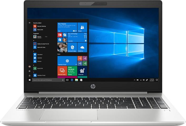 HP ProBook 450 G6 Computer portatile Argento 39,6 cm (15.6