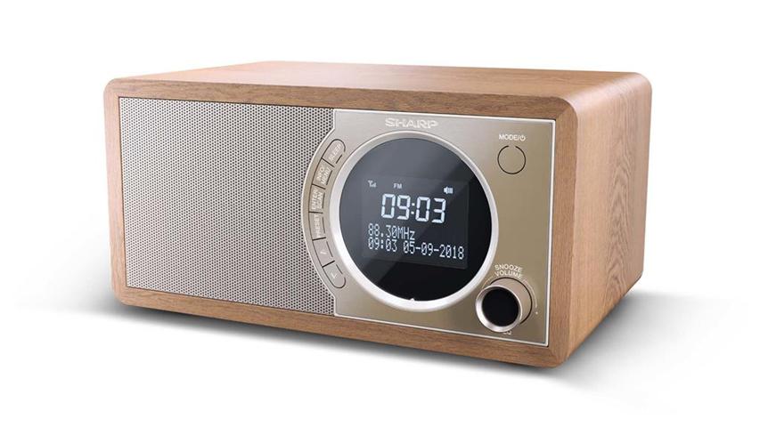 Sharp DR-450 radio Personale Digitale Marrone, Acciaio inossidabile