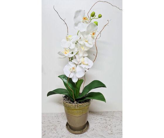 la mimosa orchidea finta bianca completa di vaso in ceramica