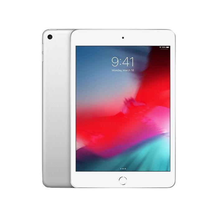 Apple iPad mini 5 256 GB Argento Wi-Fi grade A+