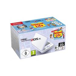 Nintendo Console 2DS XL