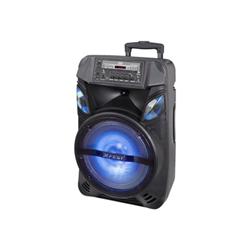 Trevi Casse acustiche Altoparlante per eventi Portatile X-FEST XF 1200 KB