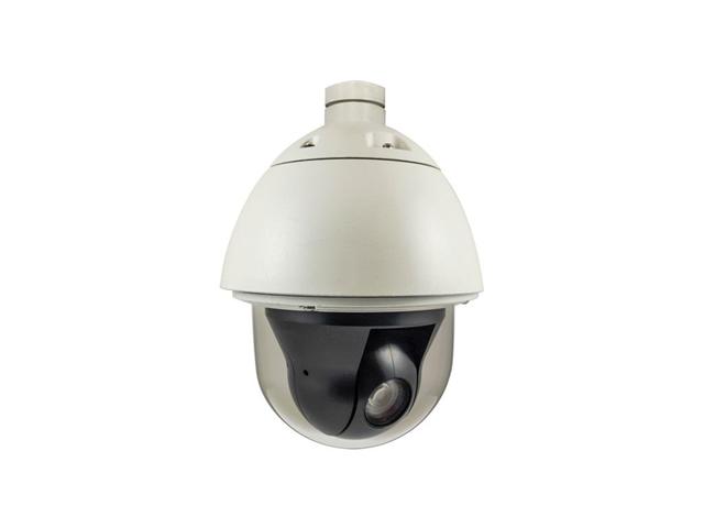 LevelOne FCS-4042 Telecamera di sicurezza IP Esterno Cupola Nero, Bianco 1920 x 1080 Pixel