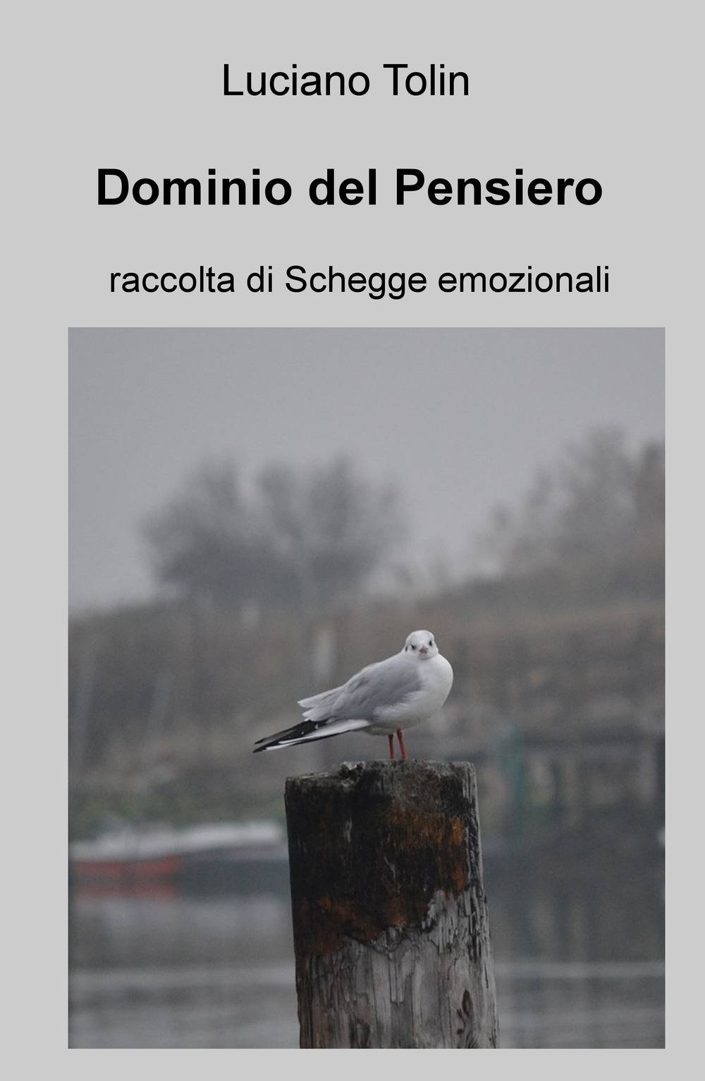 Luciano Tolin Dominio del pensiero. Raccolta di schegge emozionali Luciano Tolin ISBN:9788892344815
