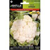 Batlle Little White Dominant Cauliflower (Garden , Gardening , Seeds)
