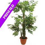 Europalms Fishtail bush, artificial plant, 380cm TILBUD NU palms euro