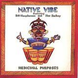 CD BABY.COM/INDYS Native Vibe - medicinska ändamål [CD] USA import