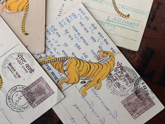 Scaramanga Hand-painted Vintage Indian Postcard - Terrible Tigers