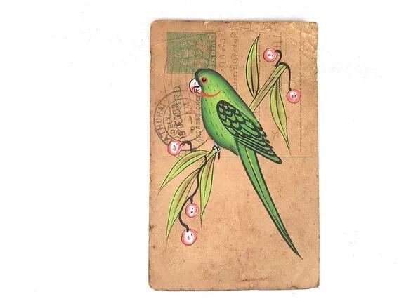 Scaramanga Pretty Parrot Vintage Postcard  Small