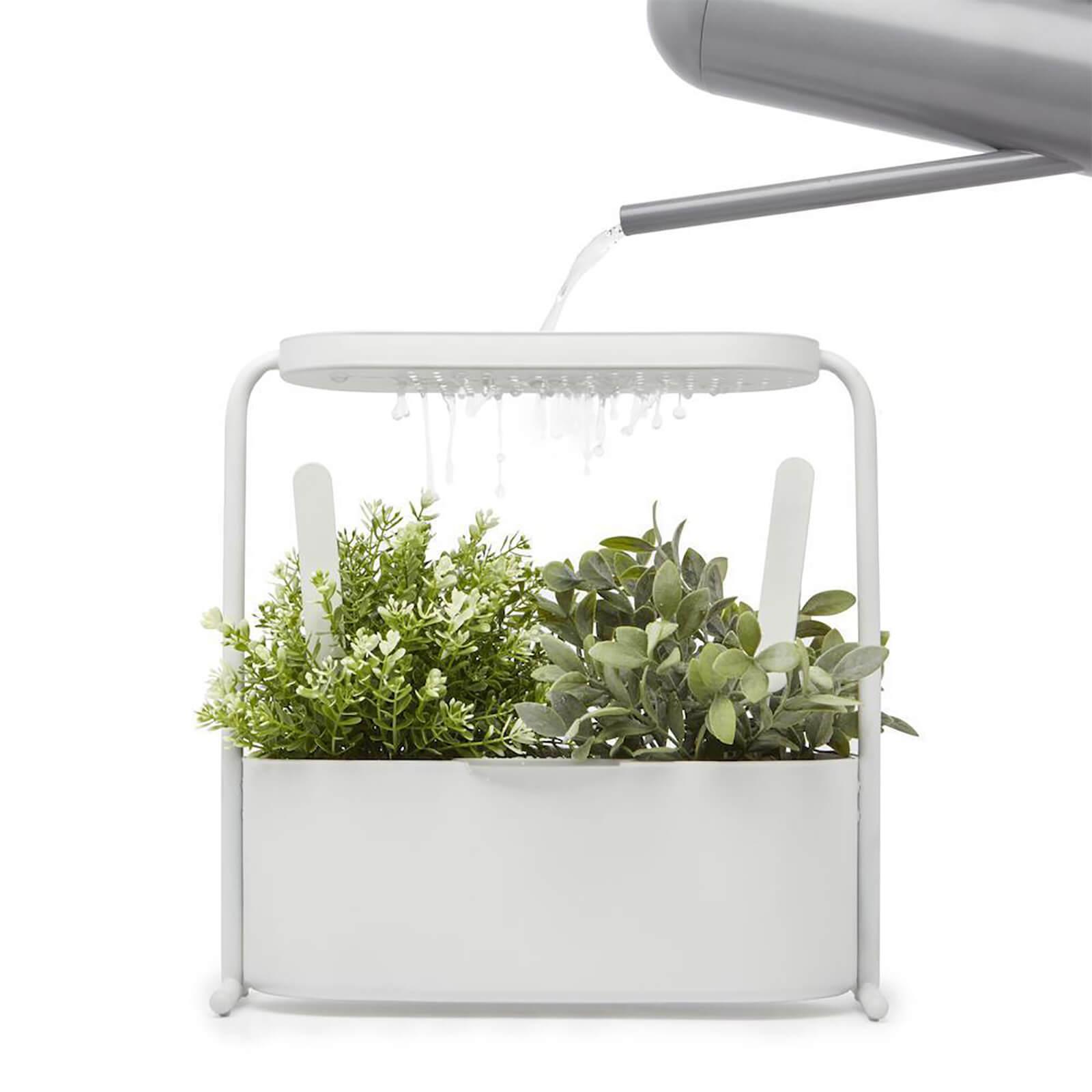 Umbra Giardino Herb Planter