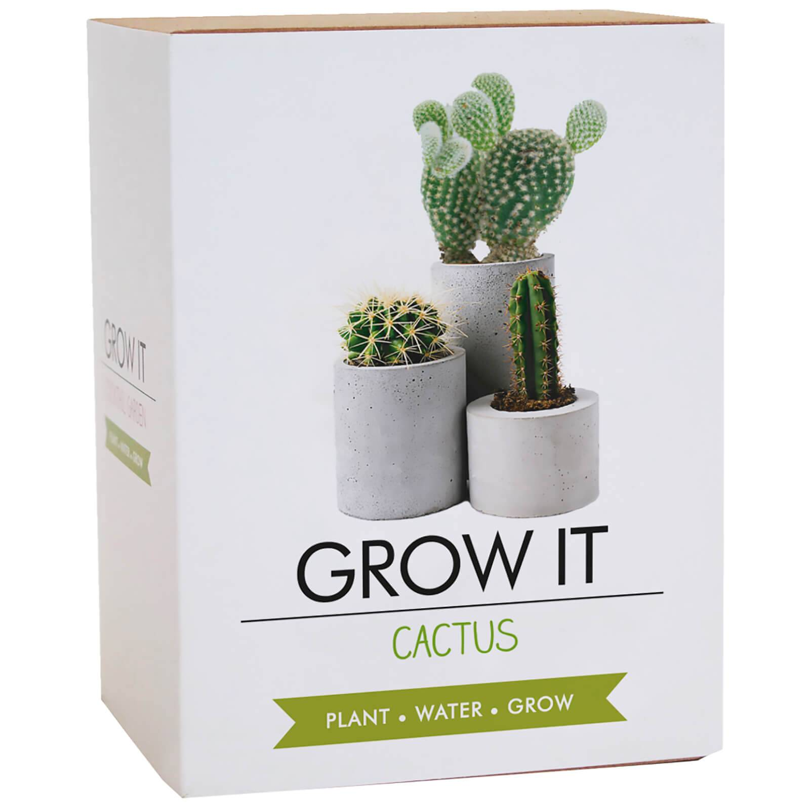 Gift Republic Grow It Cactus