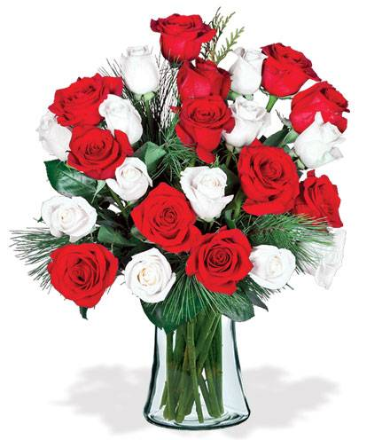 Blooms Today Red & White Holiday Roses Bouquet Flower Delivery