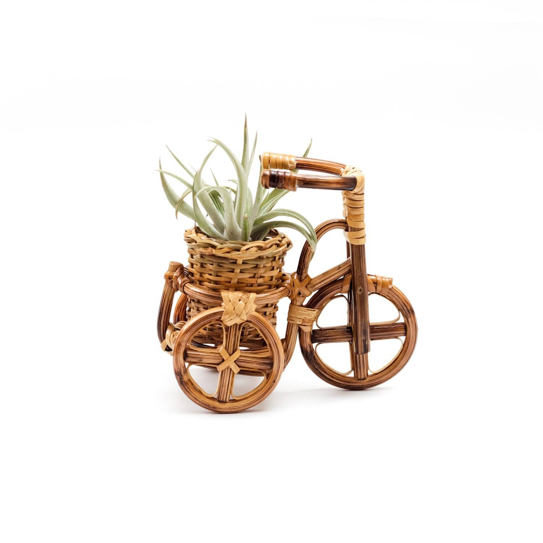 LIKH - Rattan Bike Planter Small