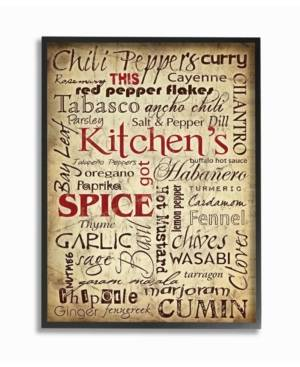 """Stupell Industries Home Decor Kitchen Spice Typography Framed Giclee Art, 16"""" x 20""""  - Multi"""