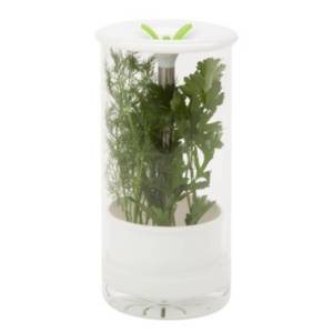 Honey Can Do Glass Herb Preserver  - White