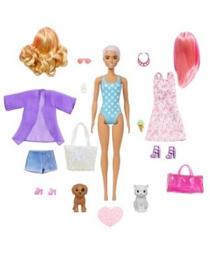 Barbie Color Reveal Doll and Accessories Assortment