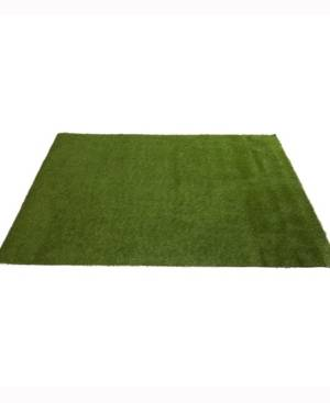 Nearly Natural 6ft. x 8ft. Artificial Professional Grass Turf Carpet Uv Resistant Indoor/Outdoor  - Green