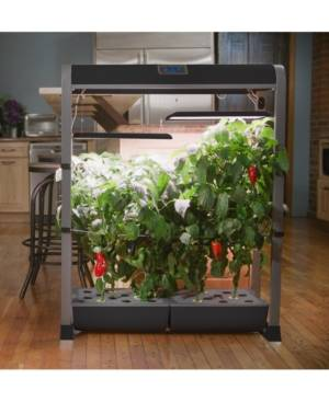 AeroGarden Farm Xl Salad Bar 24-Pod Seed Kit  - Black