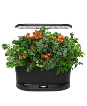 AeroGarden Bounty Basic  - Black